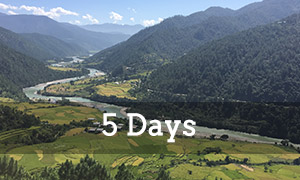 This package includes the 4 day package in addition to a visit to Punakha, the old capital where the most magnificent and impressive dzong (fortress) is located. Also included is a homestay lunch break and a hike to Dochula, the mountain pass between Thimphu and Punakha.